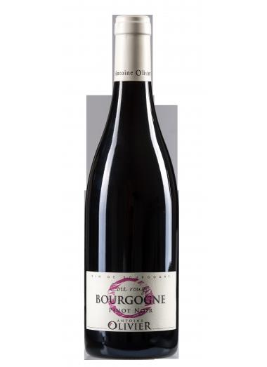 """BOURGOGNE Pinot Noit """"Côté Rouge"""" 2019"""