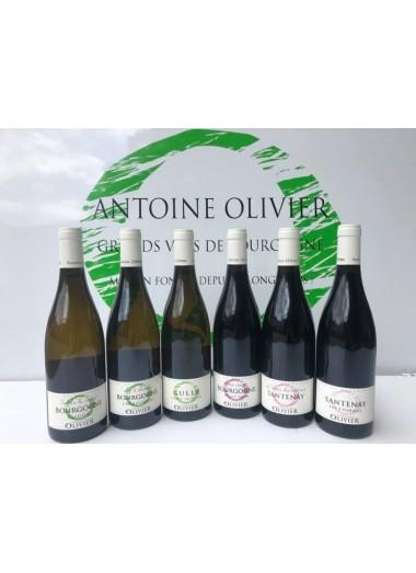 Coffret Découverte Bourgogne - 6 Vins