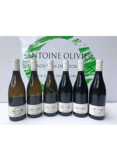 Coffret Découverte AOC Santenay - 6 vins