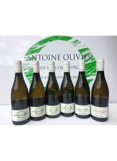 Coffret Découverte Bourgogne - 6 vins Blancs