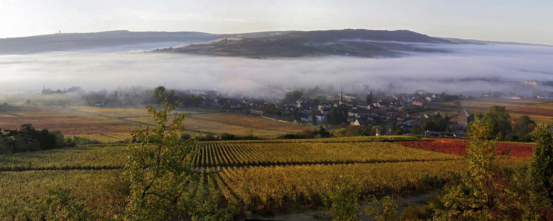 Village dans le brouillard